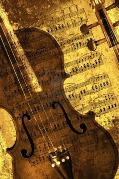 Violin Various