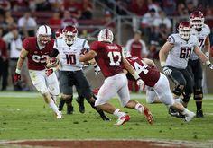 College Football Gambling: Stanford Cardinal at Washington State Cougars, Sports Betting, Oct 31st 2015