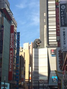 this isn't happiness™ - photo caption contains external link Space Ghost, Photo Caption, Weird Pictures, Embedded Image Permalink, Karaoke, Godzilla, Times Square, Japan, Travel