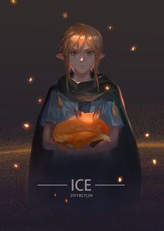 The Legend Of Zelda, Legend Of Zelda Breath, Video Game Art, Video Games, Link Botw, Link Zelda, Player 1, Twilight Princess, Breath Of The Wild