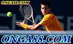 You should try to learn three vital forehand techniques from your instructor of youth tennis programs. First one is to hold racket properly as well as avoid it to become twisted easily. In this way you should be able to control direction successfully. Tennis Lessons, Tennis Tips, Tennis Wallpaper, Atp Tennis, Tennis World, Ping Pong Paddles, Usa Sports, Sports Medicine, Sports Betting