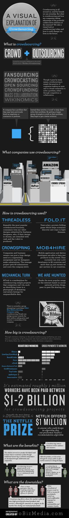What is Crowdsourcing? [infographic]