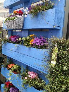Floral Wreath, Wreaths, Garden, Plants, Home Decor, Patio, Floral Crown, Garten, Decoration Home