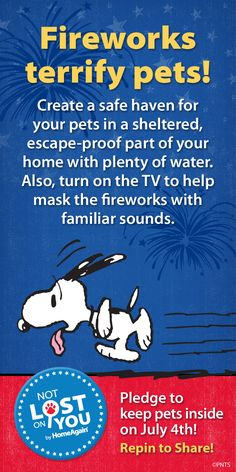 Fireworks terrify pets! Create a safe haven for your pets in a sheltered, escape-proff part of your home with plenty of water.  Also, turn on the TV to help make the fireworks with familiar sounds.  Pledge to keep your pets inside on July 4th.  Repin to share!