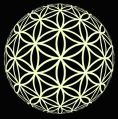 Flower of Life. Pattern that should be present in my tattoo. Here executed in a ball perspective.