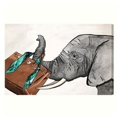 Oliver Gal Fashion Elephant Canvas Wall Art (105 CAD) ❤ liked on Polyvore featuring home, home decor, wall art, white, elephant home decor, elephant canvas wall art, white home decor, white wall art and elephant home accessories