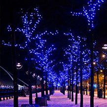 Christmas In Dublin Ireland.13 Best Christmas In Dublin Images Dublin Santa List