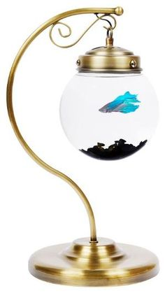 Lovely repurposed lamp into fishbowl
