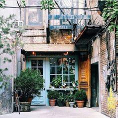 Plants charm//        Pinterest : edith corbel