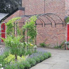 Garden Arch for Walls, in Traditional Gloss, from Agriframes offers the perfect way to transform any wall into a floral walkway, ideal for climbing plants