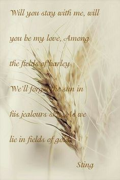 Fields Of Gold, Field Of Dreams, Wheat Fields, Love Songs, Inspire Me, Amber, Waves, Autumn, Indian Summer