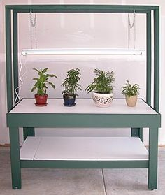 Build a Seed Starting Bench