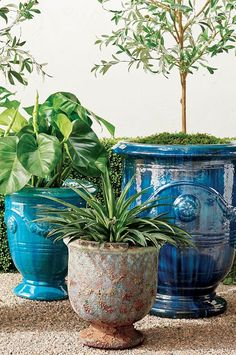 Urn-shaped and adorned with garlands and medallions, these hand-glazed ceramic planters are a staple in French gardens. With the special nature of the reactive glaze, the Azure finish displays a range of variation in tone from soft aqua and turquoise to deep azure. Each planter will appear inherently unique. Our Anduze Indoor/Outdoor Planters can stand alone as pottery pieces or complement your chosen plantings. Outdoor Planters, Indoor Outdoor, Ceramic Planters, Glazed Ceramic, Garden, Ceramic Pots, Garten, Lawn And Garden, Gardens