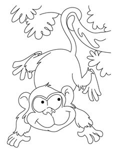 89 best Printable Wildlife images on Pinterest | Coloring pages ...