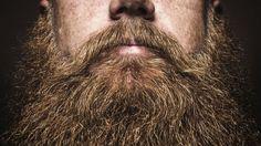Beard Growth and Thickening Shampoo and Conditioner - Beard Care With Organic Beard Oil - For Best Beard Look - For Facial Hair Growth - Beard Softener for Grooming: Health & Personal Care Michael Mosley, Natural Beard Growth, Growing A Full Beard, Barba Grande, Beard Suit, Red Beard, Beard Humor, Long Beards, Beard Grooming