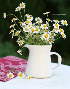 """""""Don't you think daisies are the friendliest flower?""""  Do you remember that quote from the movie """"You've got Mail""""? Meg Ryan says it to Tom Hanks when she's sick and he brings her daisies.  These daisies are actually chamomile and they smell so soothing."""