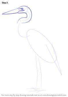 Learn How to Draw a Great Blue Heron (Birds) Step by Step : Drawing Tutorials Art Drawings For Kids, Bird Drawings, Animal Drawings, Easy Drawings, Easy Watercolor, Watercolor Animals, Watercolor Paintings, Crane Drawing, Flamingo Art