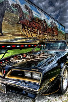 Smokey & The Bandit. Pontiac Trans Am. Bugatti Veyron, Bandit Trans Am, Chevy, Grand Chef, Smokey And The Bandit, Pontiac Cars, Pontiac Firebird Trans Am, Us Cars, Big Trucks