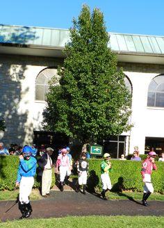 Horse racing: Jockeys emerge into the Keeneland paddock