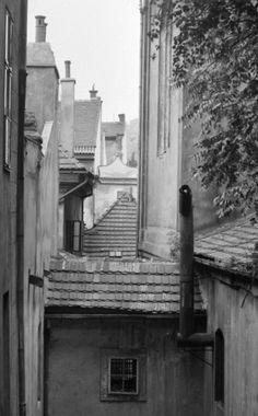Malostranské střechy (1726) • Praha, červenec 1962 • | černobílá fotografie, střechy v pohledu ze Zámeckých schodů |•|black and white photograph, Prague|