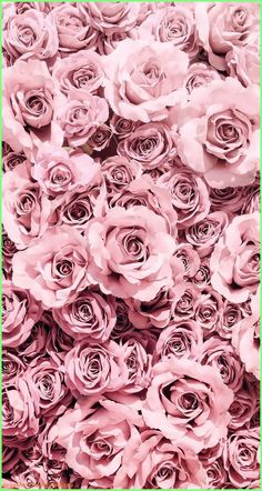 Wallpaper Iphone Aesthetic - simple and aesthetic pretty pink rose flower phone wallpaper for iphone and andr. - Wildas Wallpaper World Rose Gold Wallpaper, Flower Phone Wallpaper, Pink Wallpaper Iphone, Iphone Background Wallpaper, Colorful Wallpaper, Aesthetic Iphone Wallpaper, Nature Wallpaper, Aesthetic Wallpapers, Rose Background