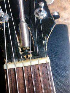 Guitar Neck, Step Guide, Acoustic Guitar, Music, Guitars, Musica, Musik, Acoustic Guitars, Muziek
