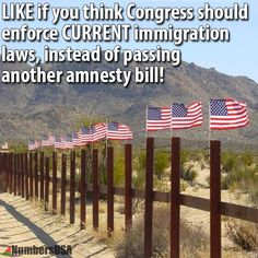 "pinner wrote: The last amnesty was enough chance to see if this crap worked....""NOT SO WELL""... NOW WE NEED TO CLOSE THE DAMN DOORS..  WE NEED TO SPREAD THE THEME AND PUT THE PRESSURE ON TILL IT IS DONE. repin...repin..repin..( did you know that the uneducated masses don't even know about the first amnesty???)"
