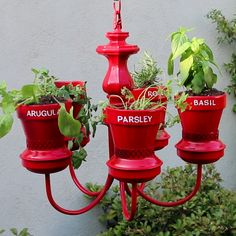 An Old Chandelier Into This Magical Herb Garden - Nifty Plants & Gardenin. An Old Chandelier Into This Magical Herb Garden - Nifty Plants & Gardenin. Easy indoor garden ideas you can do at home. Garden Crafts, Garden Projects, Diy Projects, House Projects, Recycled Garden Art, Cat Crafts, Old Chandelier, Chandelier Planter, Outdoor Chandelier