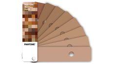 Pantone Skin Tone - Pantonera basada en colores de piel