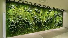 Žalios sienos