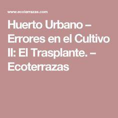 Huerto Urbano – Errores en el Cultivo II: El Trasplante. – Ecoterrazas