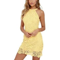 Embroidered Lace Rose Sleeveless Women Bodycon Dress