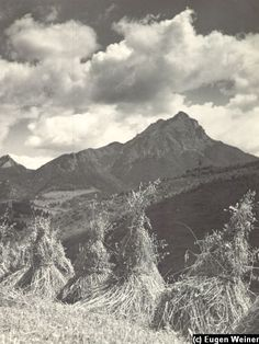 Mountains, Retro, Nature, Travel, Life, Naturaleza, Viajes, Destinations, Traveling