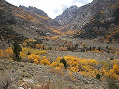 Cowboy country Elko Nv   fall colors in the valley