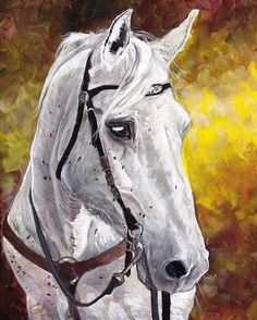 O'Sage Dolly, my mother's Missouri Foxtrotter. It was a memorial/Christmas gift for my mom. She loved it ❤️the photograph of the painting was poorly cropped but I was dumb and only took one photo at a higher resolution 🙄#acryliconcanvas #acrylicpaint #horseart #horses #horse #missourifoxtrotter #mare #foxtrotter #painting #paintings #horsepainting #petportrait #animalpainting #animals #equine #equineart #equineartist #acrylic