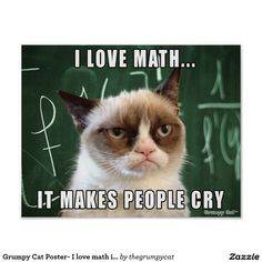 "Siamese Cats Applehead Grumpy Cat Poster- I love math it makes people cry - This was made by request for all the math teachers out there! Features the original Grumpy Cat photo over a chalk board with the caption ""I love math. It makes people cry. Grumpy Cat Quotes, Funny Grumpy Cat Memes, Funny Animal Jokes, Cute Funny Animals, Funny Animal Pictures, Animal Memes, Funny Cats, Funny Memes, Grumpy Cat Images"