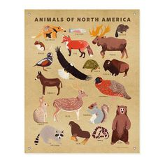 Flowers of North America Banner in Unframed Wall Art | The Land of Nod