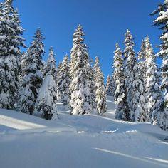 Type 3, Theater, Skiing, Snow, Facebook, Outdoor, Ski, Outdoors, Theatres