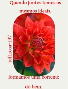 Meus Poemas  Minhas Reflexões (R.R.): N.44 Reflexão (n.197 quando juntos temos os mesmos...