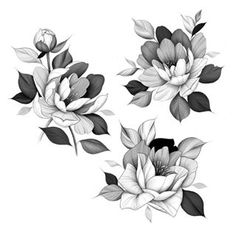 Inspired by some of your comments on my Giveaway post! Many of you were grateful for your loved ones & friends for… Realistic Flower Drawing, Peony Drawing, Floral Drawing, Floral Tattoo Design, Flower Tattoo Designs, Flower Tattoos, Butterfly Tattoos, Lotusblume Tattoo, Cover Tattoo