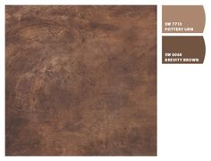 CEMENT BROWN   Paint colors from Chip It! by Sherwin-Williams -- This is a beautiful texture that you could achieve with just paint.  Might be too much.