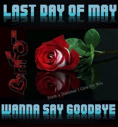 Last day of May..where did it go?