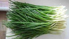 Супер-способ как вырастить зеленый лук у себя дома в пакете. Без земли и горшков