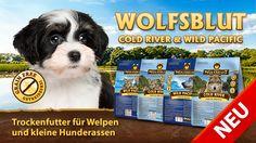 Wolfsblut Trockenfutter Cold River und Wild Pacific gibt es jetzt auch speziell abgestimmt auf die Bedürfnisse von Welpen und kleinen Hunden #wolfsblut #healthfood24