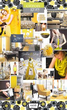 Citron/ Gray color story Inspiration Board  Spring 2011