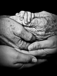 Black and white picture of baby hands and grandparent hands