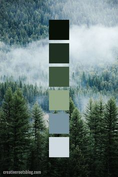 - Modern Interior Designs - Muted Forest Green Color Palette Idea Color palette inspired by fog rolling through a dark green forest. Interior design, graphic design, and more can find inspiration and color ideas from this natural green color palette.