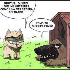 Pixie Y Brutus Especial - Pixie Y Brutus Especial - 4 Page 1 (Load Image Cute Funny Animals, Cute Baby Animals, Animals And Pets, Pixie, Animal Drawings, Cute Drawings, Cute Funny Cartoons, Rambo, My Little Pony Wallpaper