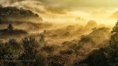 misty road by TigerSeo. @go4fotos