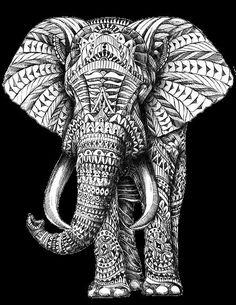 elephant wallpaper tumblr - Google Search